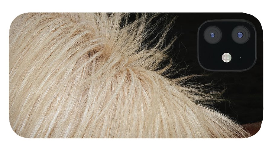 Horse IPhone 12 Case featuring the photograph Icelandic Horse by Roine Magnusson