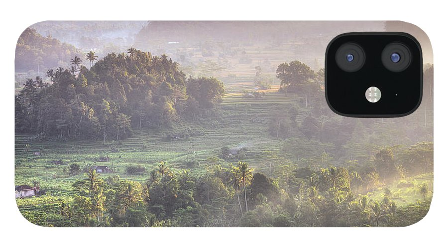 Tranquility iPhone 12 Case featuring the photograph Indonesia, Bali, Forest Landscape by Michele Falzone