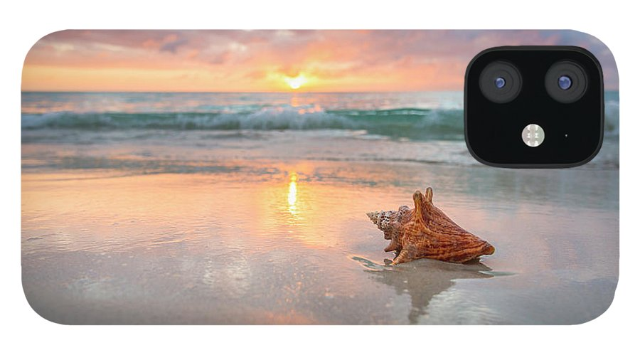 Nature IPhone 12 Case featuring the photograph Jamaica, Conch Shell On Beach by Tetra Images