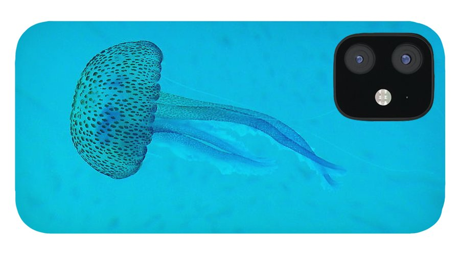 Underwater IPhone 12 Case featuring the photograph Jellyfish In Wild by Sir Francis Canker Photography