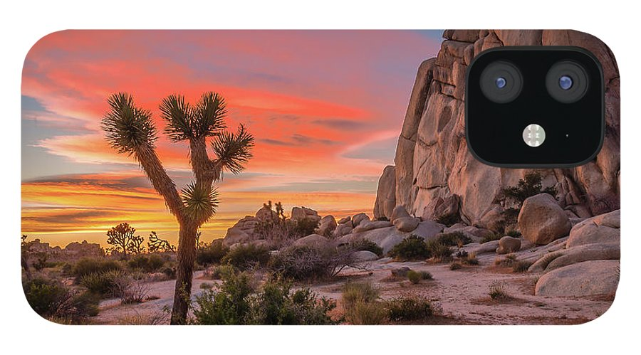 California IPhone 12 Case featuring the photograph Joshua Tree Sunset by Peter Tellone