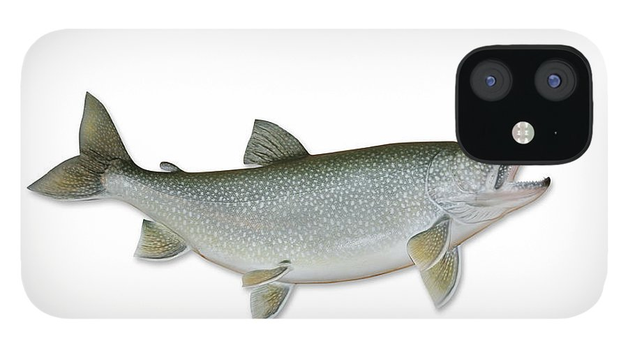 White Background IPhone 12 Case featuring the photograph Lake Trout With Clipping Path by Georgepeters