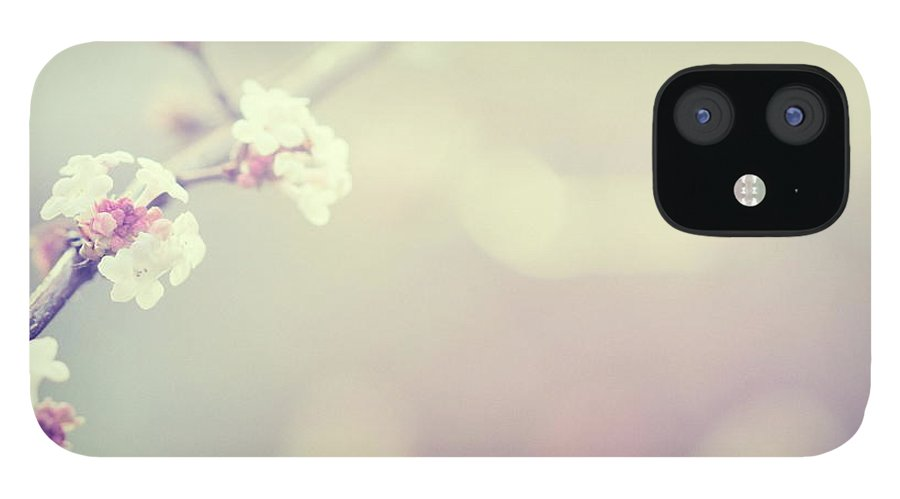 Silence IPhone 12 Case featuring the photograph Little Flowers In Winter by Rike
