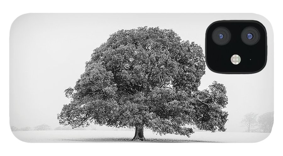 Scenics IPhone 12 Case featuring the photograph Lone Holm Oak Tree In Snow, Somerset, Uk by Nick Cable