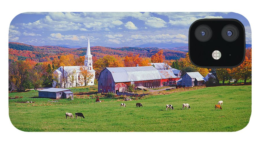 Scenics IPhone 12 Case featuring the photograph Lush Autumn Countryside In Vermont With by Ron thomas