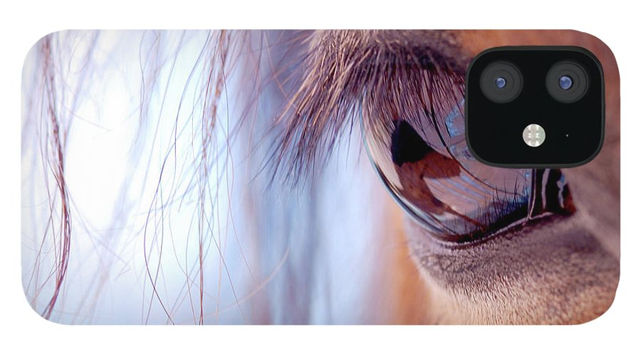 Horse IPhone 12 Case featuring the photograph Macro Of Horse Eye by Anne Louise Macdonald Of Hug A Horse Farm
