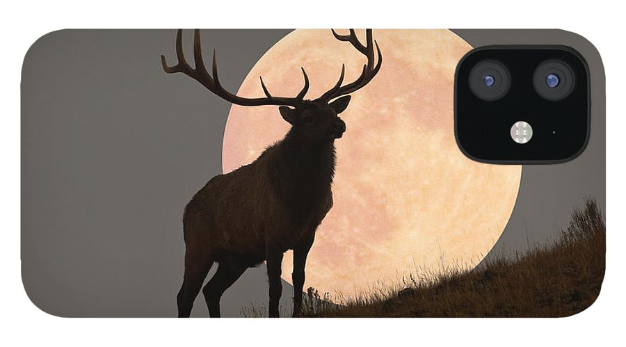 Horned IPhone 12 Case featuring the photograph Majestic Bull Elk And Full Moon Rise by Mark Miller Photos