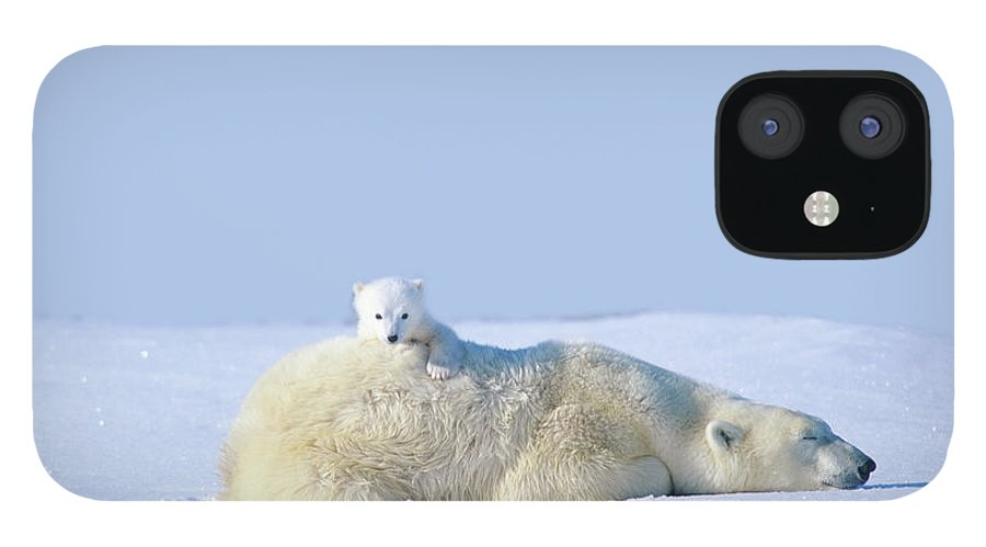 Bear Cub IPhone 12 Case featuring the photograph Mother Polar Bear With Cub, Lying On by Art Wolfe