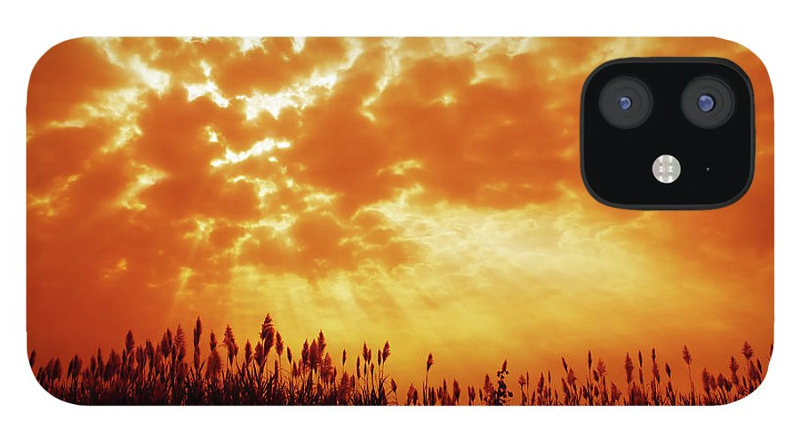 Orange Color IPhone 12 Case featuring the photograph Orange Tinted Sky Illustrating by Tommyix