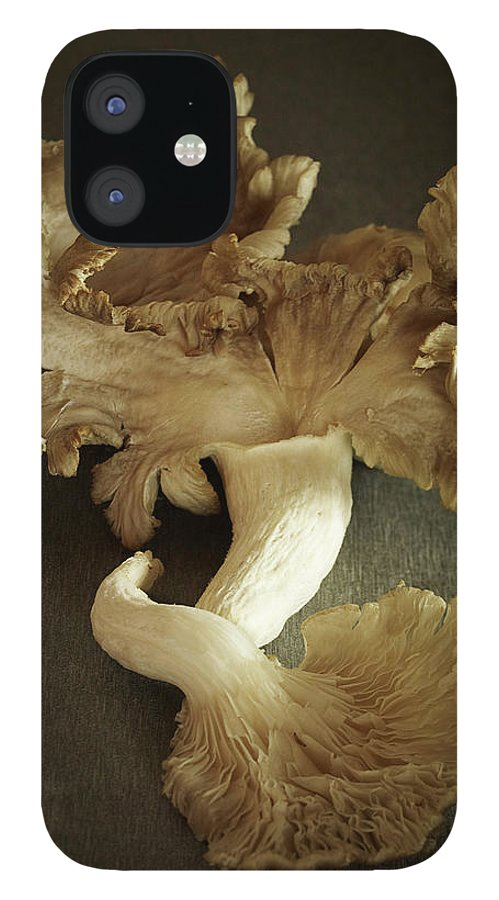 Edible Mushroom iPhone 12 Case featuring the photograph Oyster Mushrooms Still Life by Carin Krasner