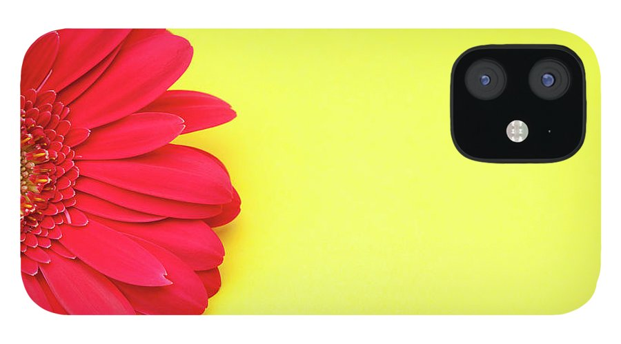 Petal iPhone 12 Case featuring the photograph Pink Gerbera Daisy On Yellow Background by Jill Fromer