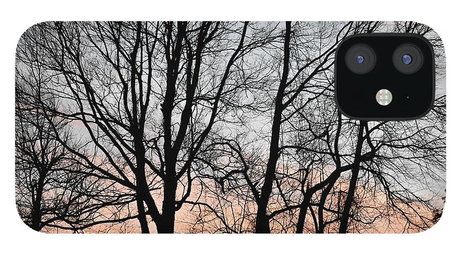 Trees IPhone 12 Case featuring the photograph Pink Sky by Cassidy Marshall