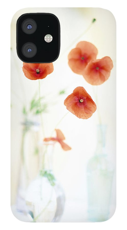 Vase iPhone 12 Case featuring the photograph Poppies In Vases by Victoria Pearson