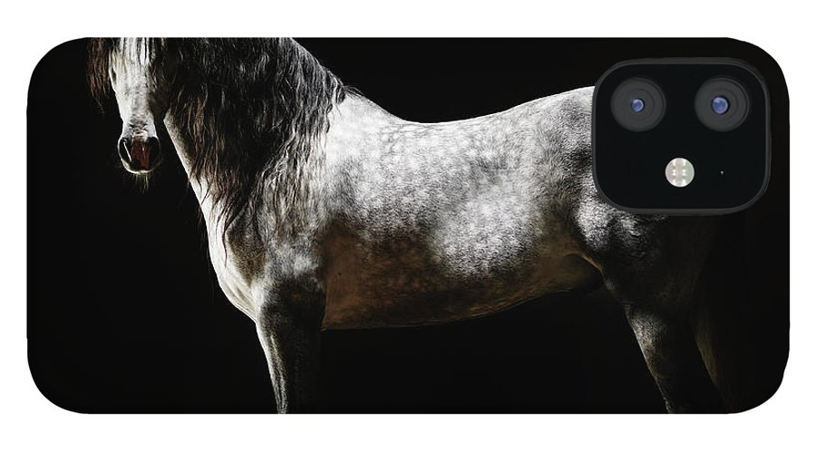 Horse IPhone 12 Case featuring the photograph Portrait Of Standing Grey Horse by Henrik Sorensen