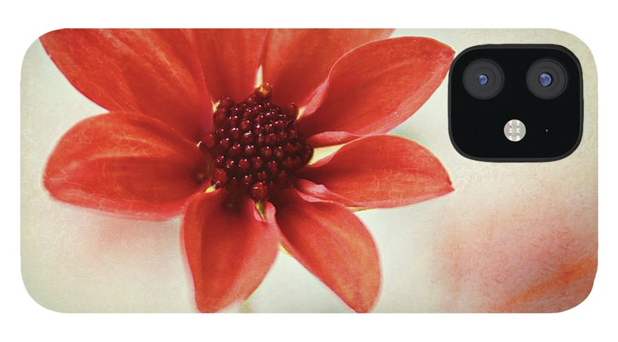 Orange Color IPhone 12 Case featuring the photograph Pretty Orange Flower by Captured By Karen Photography