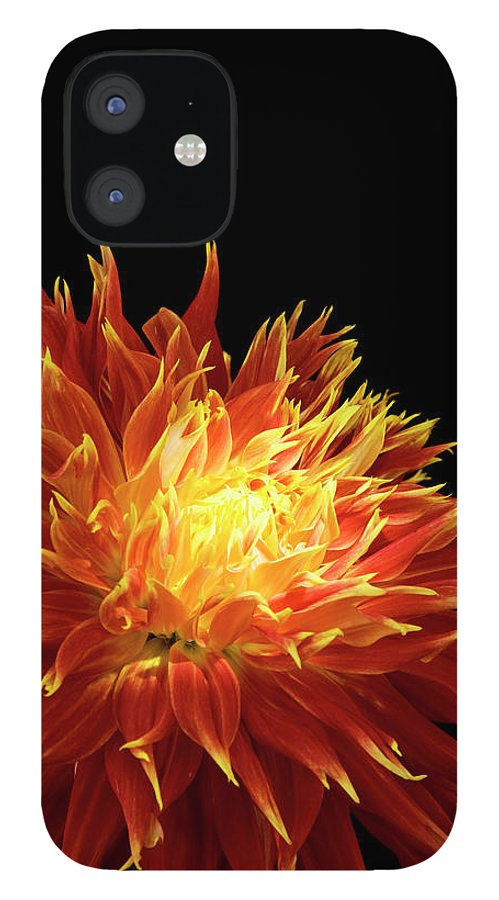 Firework Display IPhone 12 Case featuring the photograph Red-yellow Dahlia Flower by Eyepix