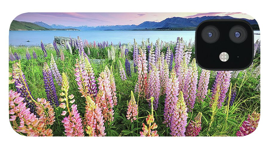 Tranquility IPhone 12 Case featuring the photograph Russel Lupines At Lake Tekapo by Atomiczen