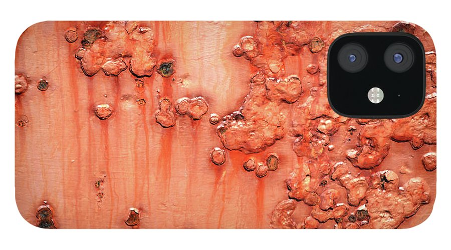Rust IPhone 12 Case featuring the photograph Rust by Trevor Slauenwhite
