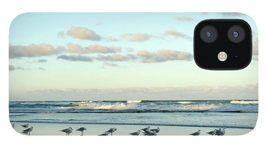 Working iPhone 12 Case featuring the photograph Seagulls In Heaven V2 by Breecedownunder