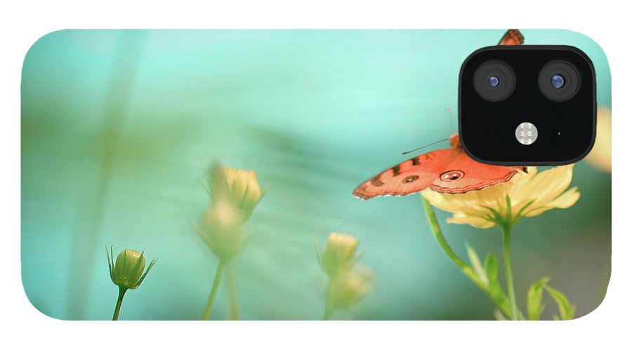 Animal Themes IPhone 12 Case featuring the photograph She Rests In Beauty by Patricia Ramos