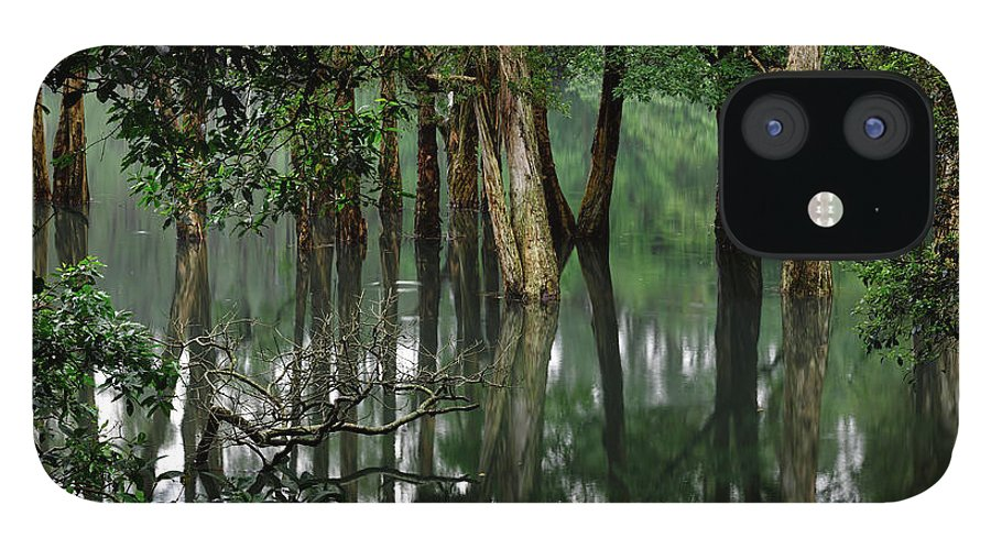 Tranquility IPhone 12 Case featuring the photograph Shing Mum Reservior by Wilbur Law
