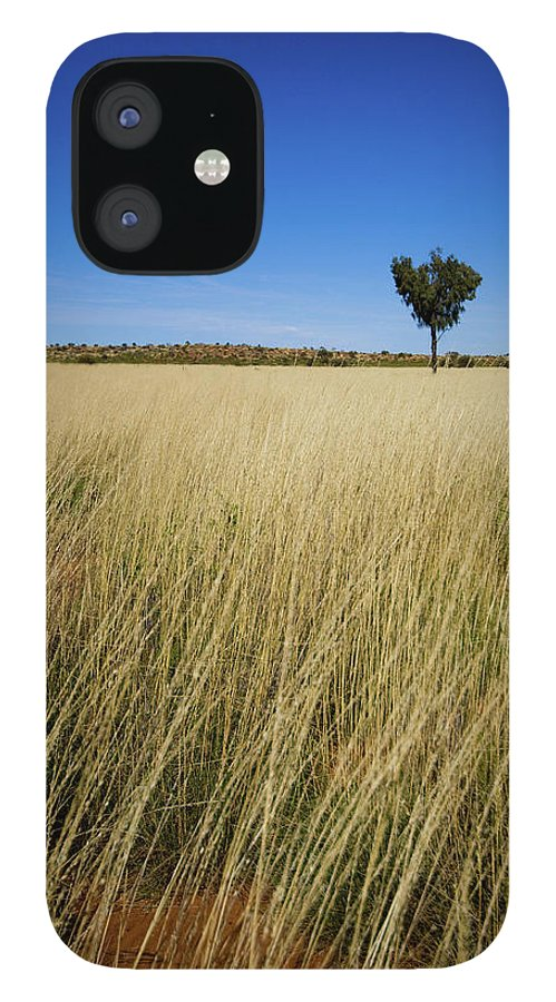Scenics iPhone 12 Case featuring the photograph Small Single Tree In Field by Universal Stopping Point Photography