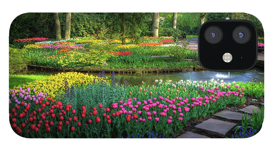 Netherlands IPhone 12 Case featuring the photograph Springtime Keukenhof Gardens With by Darrell Gulin