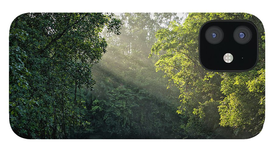 Tropical Rainforest IPhone 12 Case featuring the photograph Sunlight Shining Through Trees On River by Brasil2