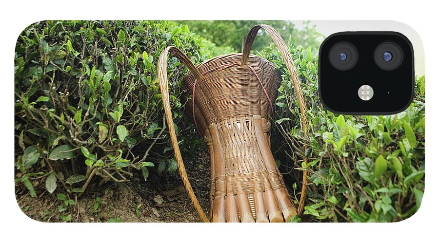 Outdoors iPhone 12 Case featuring the photograph Tea Pickers Basket by Russell Monk
