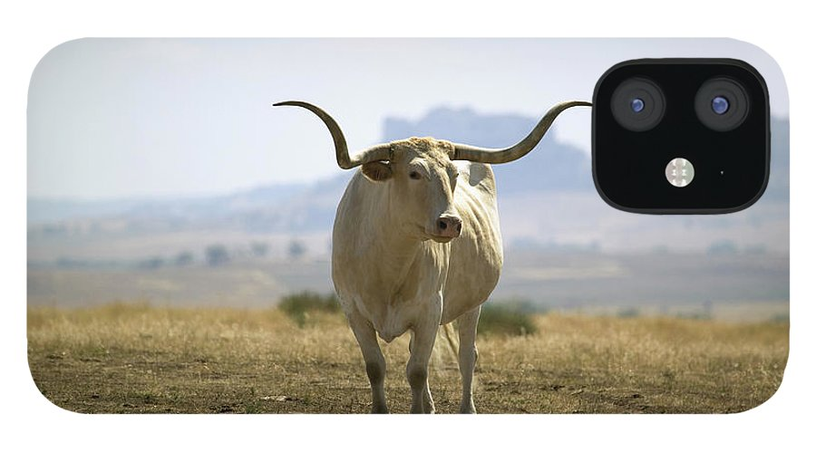 Horned IPhone 12 Case featuring the photograph Texas Longhorn by Joseph Sohm-visions Of America