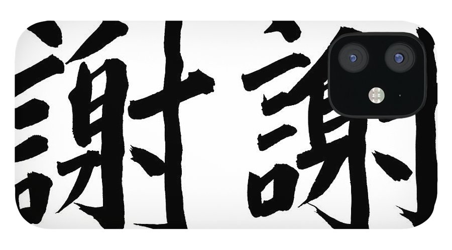 Thank You IPhone 12 Case featuring the photograph Thank You In Chinese by Blackred
