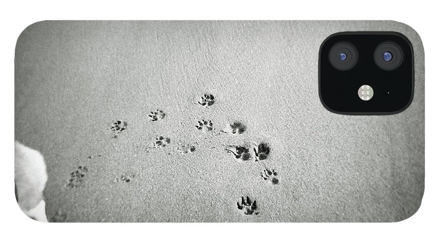 Pets IPhone 12 Case featuring the photograph The Beach by Moaan