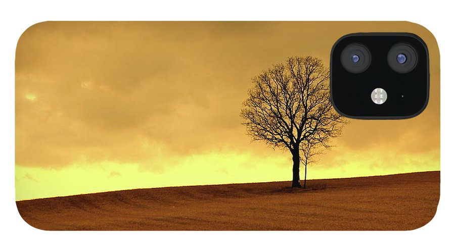 Scenics IPhone 12 Case featuring the photograph Tree On Hillside At Dusk Sepia by Driftless Studio