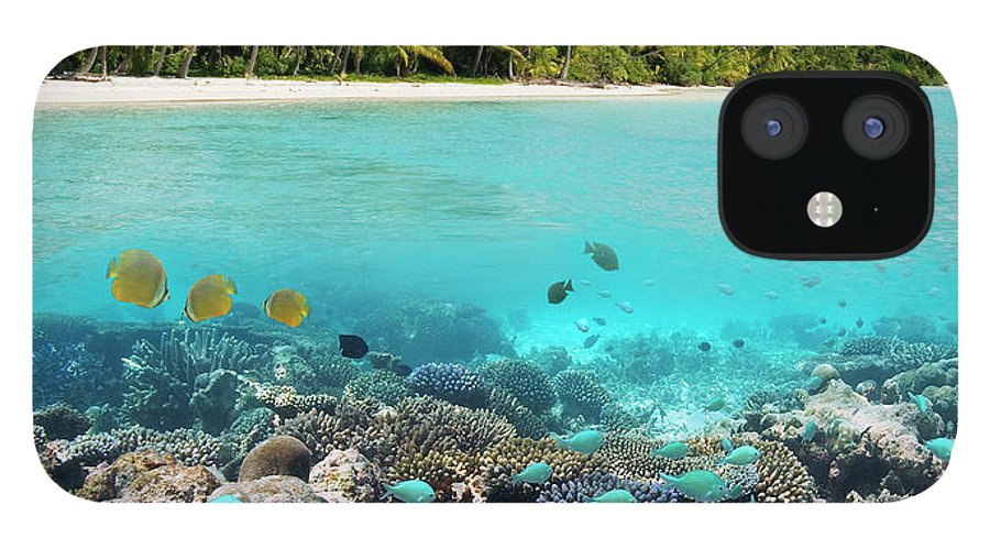 Underwater IPhone 12 Case featuring the photograph Tropical Paradise - The Maldives by Steve Allen