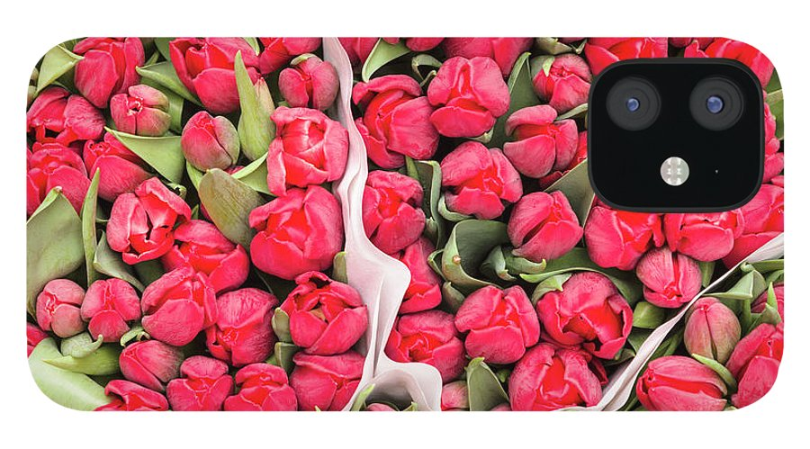 North Holland IPhone 12 Case featuring the photograph Tulips For Sale At A Flower Market by P A Thompson