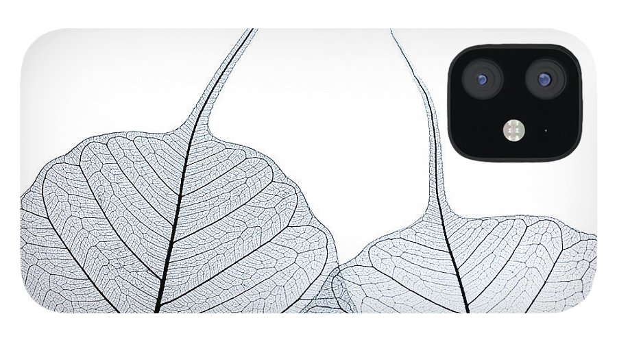 Tranquility IPhone 12 Case featuring the photograph Two Leaf Skeletons by Peter Dazeley