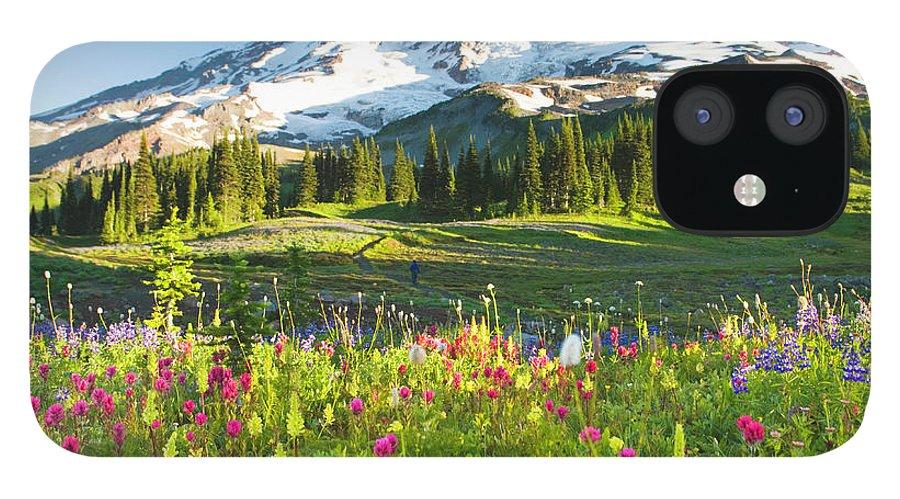 Scenics iPhone 12 Case featuring the photograph Usa, Washington, Mt. Rainier National by Rene Frederick