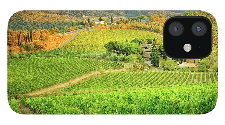 Environmental Conservation IPhone 12 Case featuring the photograph Vineyard Sunset Landscape From Tuscany by Csondy