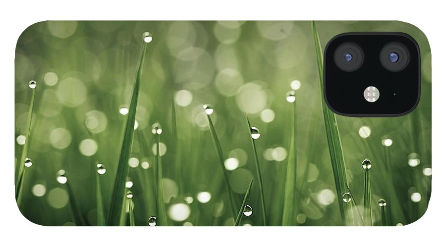 Grass IPhone 12 Case featuring the photograph Water Drops On Grass by Florence Barreau