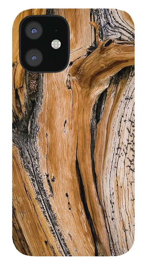 Weathered IPhone 12 Case featuring the photograph Weathered Wood Of Ancient Bristlecone by Kevin Schafer