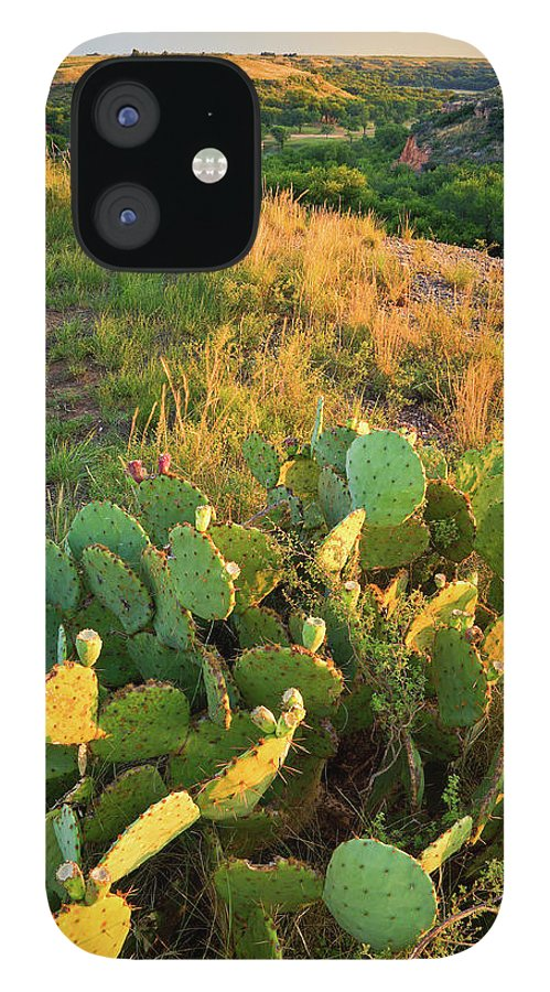 Scenics IPhone 12 Case featuring the photograph West Texas Canyon Country At Buffalo by Dszc