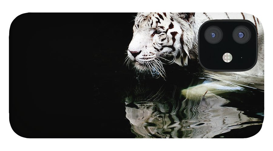 Three Quarter Length IPhone 12 Case featuring the photograph White Tiger In Water by Carlina Teteris