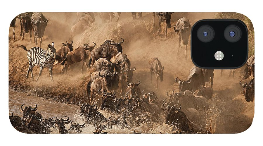 Horned IPhone 12 Case featuring the photograph Wildebeest And Zebra by Marsch1962uk