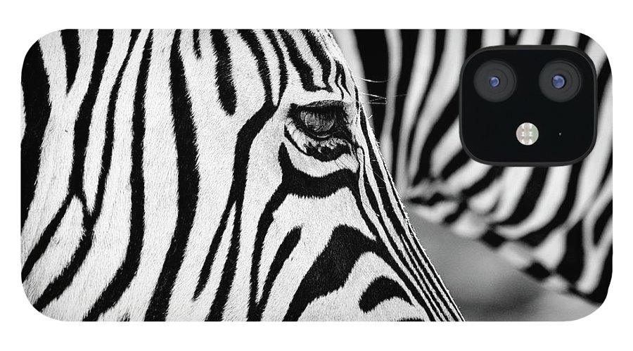 Animal Themes IPhone 12 Case featuring the photograph Zebra Stripes by Chris Kolaczan