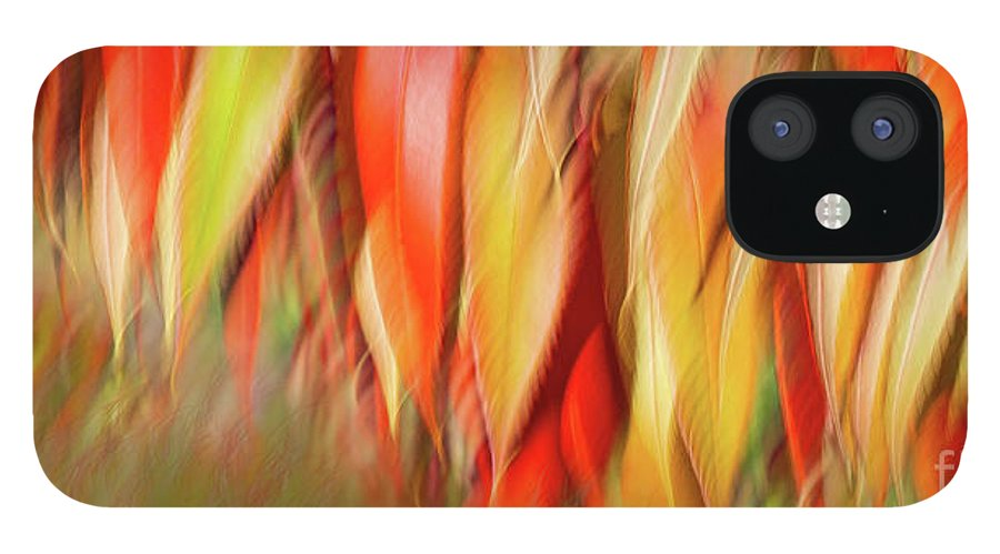 iPhone 12 Case featuring the photograph Autumns Feathers of Fire by Marilyn Cornwell