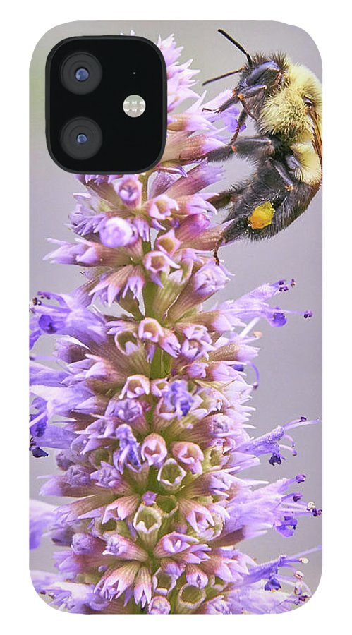 Bumblebee IPhone 12 Case featuring the photograph Bumblebee on Blue Giant Hyssop by Jim Hughes