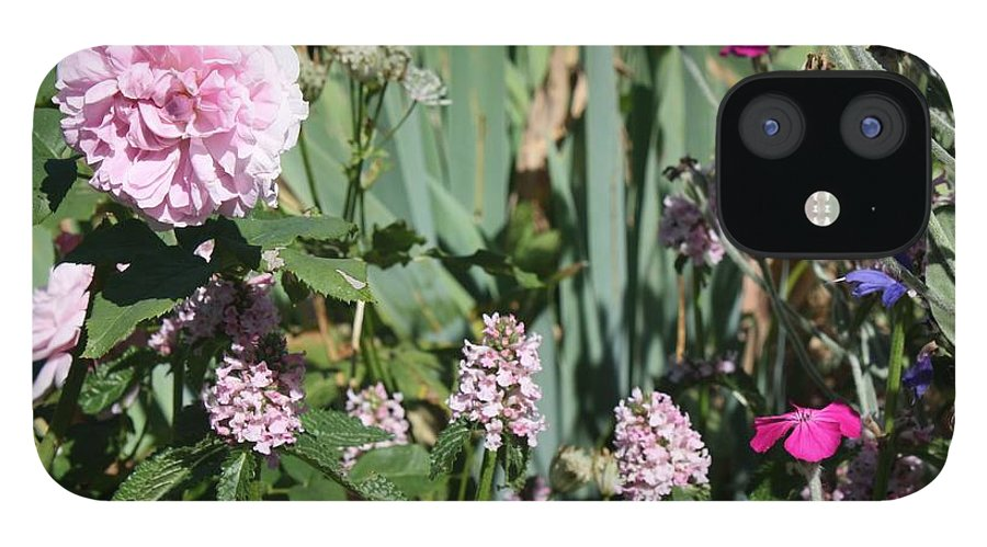 Cottage Garden IPhone 12 Case featuring the photograph Cottage Garden by Vicki Cridland