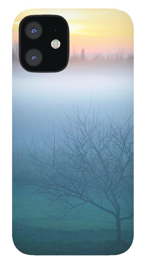 Fog IPhone 12 Case featuring the photograph Evening Fog by Trevor Slauenwhite