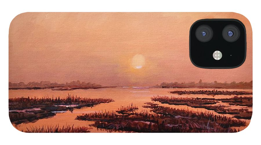 Marsh iPhone 12 Case featuring the painting Evening Time by Sinisa Saratlic