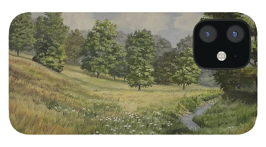 Cloudy Skies IPhone 12 Case featuring the painting Field And Stream by Wanda Dansereau